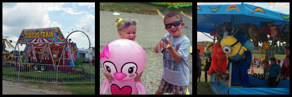 MarionCountyFair2014review2