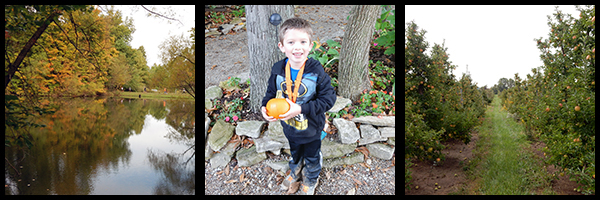 pumpkinrun2014review2